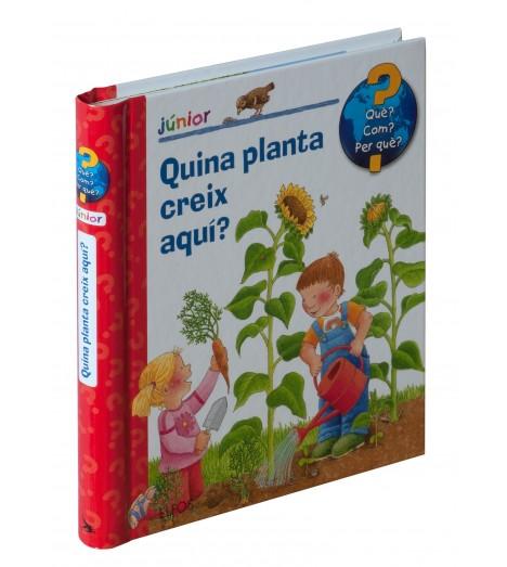 Quina planta creix aquí?