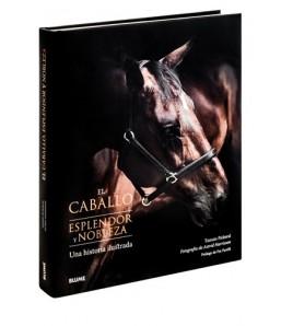 El caballo. Esplendor y nobleza